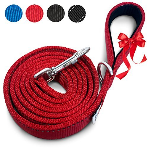 PetsLovers Padded Handle Dual sided Reflective