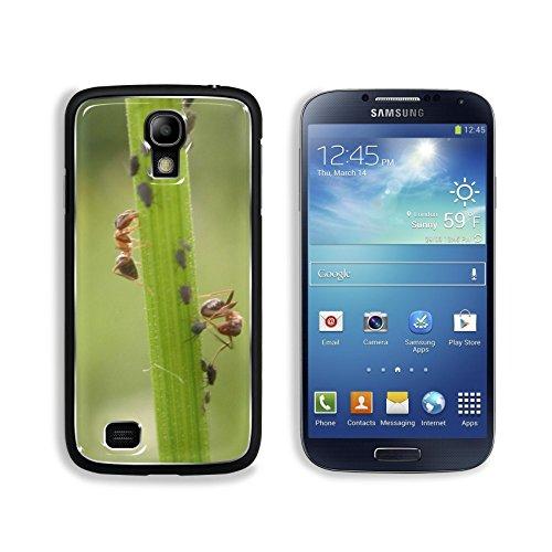 msd-premium-samsung-galaxy-s4-aluminum-backplate-bumper-snap-case-dscn3784-image-3607089946