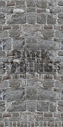STONE WALL BACKDROP #1 for Haunted House Professional Quality Theatrical Background by Dark Springs Studios