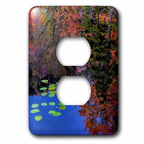 Danita Delimont - Adirondacks - USA, New York, Adirondack Mountains. Trees reflecting in water - Light Switch Covers - 2 plug outlet cover - Adirondack Lights Pads