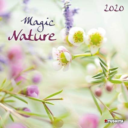 Calendario 2020 Naturaleza Magica Zen - Flores - Árbol ...