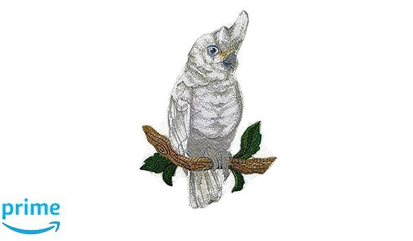 Beyondvision Pájaros Increíble Reino De Hierro Bordado Parches De Costura Gris 5,25 X4, Negro, Blanco, Verde,: Amazon.es: Hogar