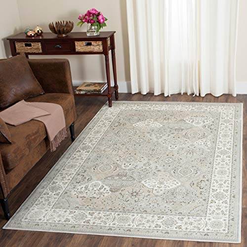 Safavieh Persian Garden Collection PEG609W Traditional Silver and Ivory Viscose Area Rug (4' x 5'7