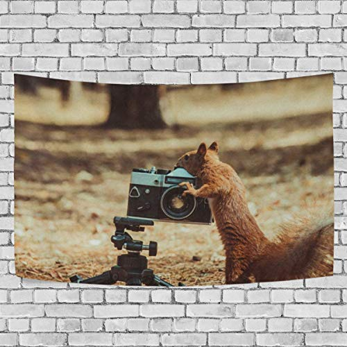 (DOPKEEP Red Squirrel Film Camera Tapestry Tapestries Decor Wall Art for Home Bedroom Living Room Dorm 90x60)