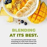 Cleanblend Classic Blender, Personal Blender for
