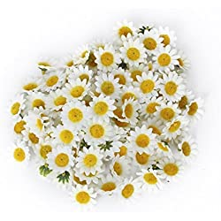 MagicW 11 100Pcs Artificial Wholesale Fake Gerbera Daisy Silk Sunflowers Sun Heads for Wedding Party Flowers Decorations Home D¨¦cor White