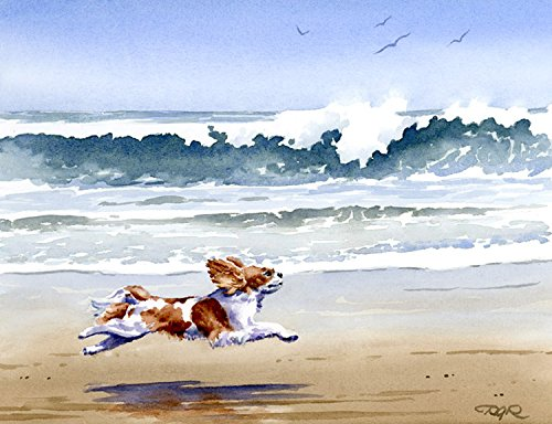 Cavalier King Charles Spaniel at The Beach Art Print by Watercolor Artist DJ Rogers ()
