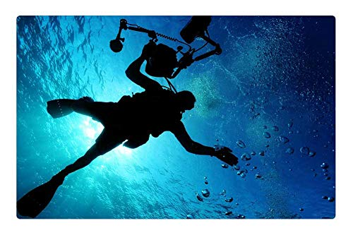 Ocean Floor Underwater Cameras - 6