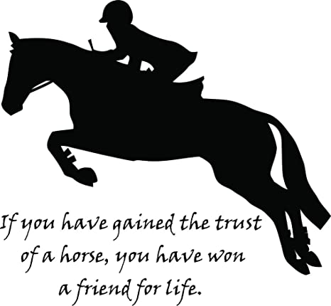 Amazon.com: Animal Love Passion Quotes Quote Equestrian ...