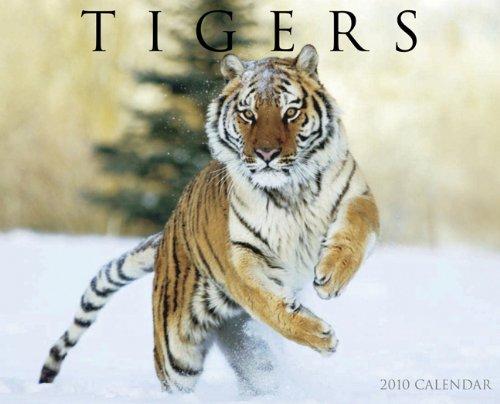 Tigers 2010 Calendar