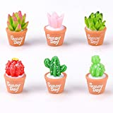 ZX101 2Pcs Cute Cactus Creative Resin Miniature Landscape DIY Succulent Plants Decor DIY Crafts Doll's House Bonsai Micro Ornament Random Style