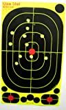 10 inch target - 40 pack - 17