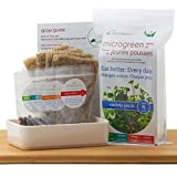 Variety Pack Microgreen Grow Kit with Reusable Tray. Grow 4 Different Kinds of microgreens at Home: Peas Please, Sweet Greens, Tangy Choy and Zesty Radish.