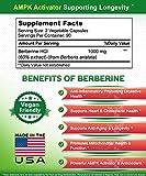Pure Berberine 1000mg Supplement - 180 Veggie