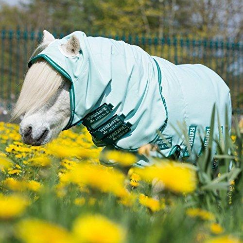Horseware Rambo Petite Sweetitch Hoody - Ice-Green/Green
