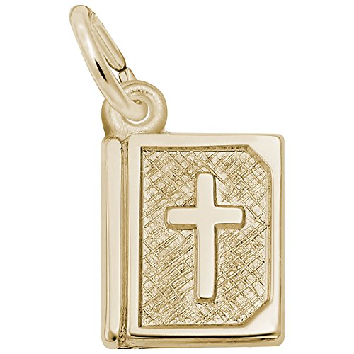 10k Yellow Gold Bible Charm, Charms for Bracelets and Necklaces by Rembrandt Charms (Image #1)
