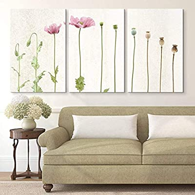 3 Panel Canvas Wall Art - Poppy Flowers and Poppy Seed Pods - Giclee Print Gallery Wrap Modern Home Art Ready to Hang - 16