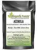 Acerola - Acerola Seed Extract Powder - 25% Ascorbic Acid (Malphighia glabra), 2 kg