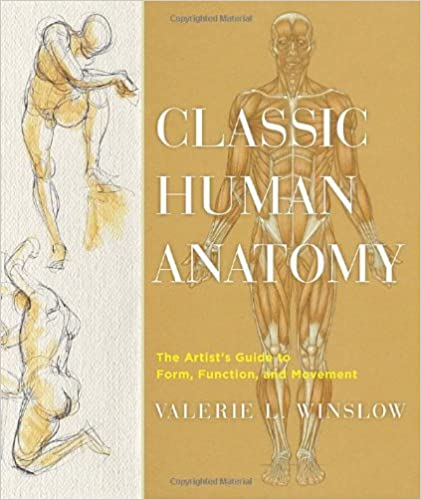Download E Books Classic Human Anatomy The Artists Guide To Form Function And Movement PDF