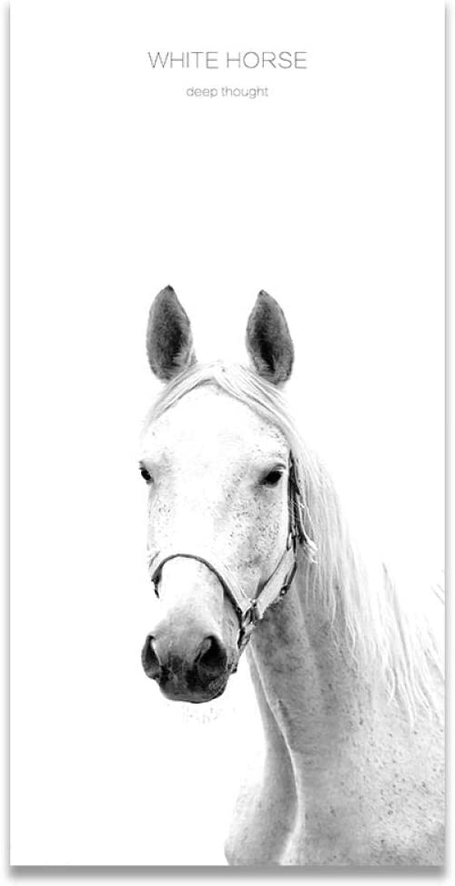 Flduod 60X120Cm -Cuadro en Lienzo Animal Caballo Oscuro Caballo Blanco Rectángulo Vertical Cuadro en Lienzo Pintura Cartel Artístico Cuadros de Pared para Sala de Estar Decoración para el hogar