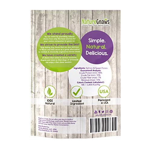 Nature Gnaws Smoked Salmon Jerky Strips for Dogs - Premium Natural Grain Free Dog Chew Treats - Simple Fish and Sweet Potato Receipe (8 oz)