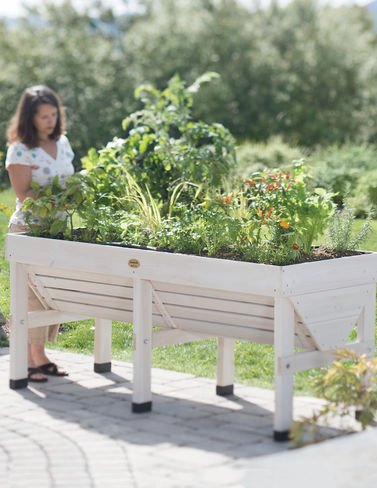 VegTrug Elevated Patio Garden, Whitewash by Vegtrug Limited