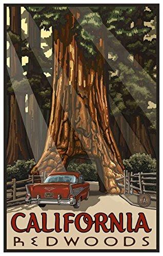 California Redwoods Car Thru Tree Travel Art Print Poster by Paul A. Lanquist (12