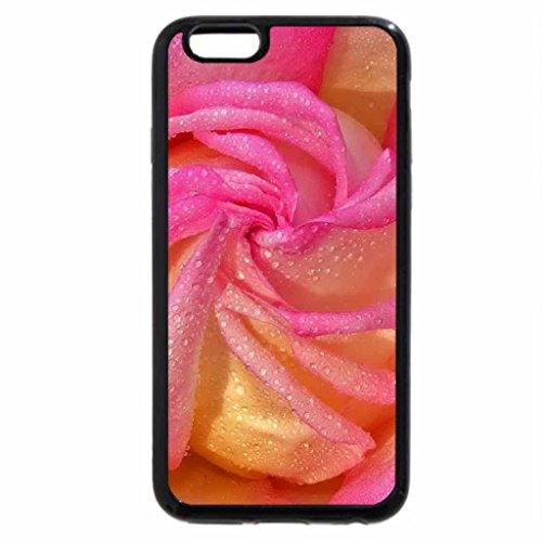 iPhone 6S / iPhone 6 Case (Black) Stunning Pink Rose!