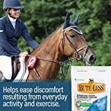 Absorbine Bute-Less Comfort & Recovery Supplement