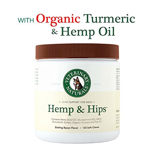Veterinary Naturals Hemp & Hips Soft Chews Joint Supplement for Dogs - Hemp Oil, Turmeric and Glucosamine for Dogs - Joint Support for Dogs Arthritis & Pain - Dog Joint Supplements, 120 Chews, Bacon