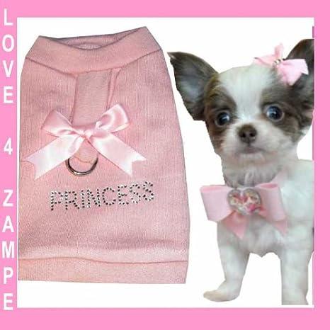 & # x2665; & # x2665; XXS Princess & # x2665; Perro Chihuahua ...