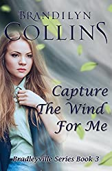 Capture the Wind for Me (Bradleyville Series Book 3)