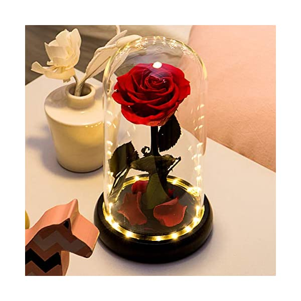 Yamonic Beauty and The Beast Red Rose Handmade Preserved Rose Forever Rose in a Glass Best Gifts for Mothers Day, Anniversary, Wedding, Birthday Gifts (Preserved Rose)