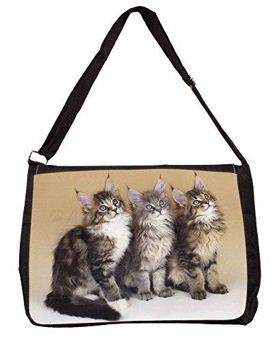 Cute Maine Coon Kittens Large 16 Black School Laptop Shoulder Bag Wcg8L0yE5