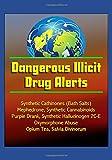 img - for Dangerous Illicit Drug Alerts: Synthetic Cathinones (Bath Salts), Mephedrone, Synthetic Cannabinoids, Purple Drank, Synthetic Hallucinogen 2C-E, Oxymorphone Abuse, Opium Tea, Salvia Divinorum book / textbook / text book