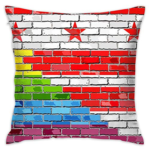 SARA NELL Velvet Throw Pillow Cases,Brick Wall Washington Dc Gay Flags,Pillow Covers Decorative 18x18 in Pillowcase Cushion Covers -