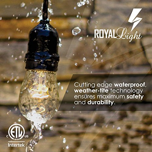 Royal Light Outdoor String Lights 48 ft Thick Bulb with Hanging Sockets Weatherproof Commercial Grade Bistro Backyard Market Patio Cafe Porch Garden Deck Gazebo Pergola Balcony Exterior Strand – Black by Royal Light US (Image #4)