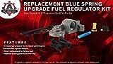 6.0 Blue Spring Kit Upgrade - Fuel Regulator Kit