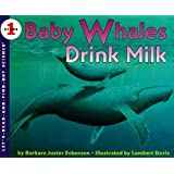 Baby Whales Drink Milk: Let's Read and Find out Science - 1