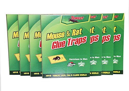 Tomcat Good Quality Double Glued Board Mouse and Insect T...