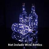 Wine Bottle Lights with Cork, 10 Pack Fairy Lights