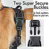 rabbitgoo Dog Harness, No-Pull Pet Harness with 2