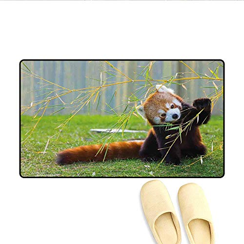 (Bath Mat Cute Red Panda on The Field Playing with Bamboo Branches Native Himalaya Mountains Door Mat Increase Brown Red 20