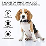DOG CARE Dog Bark Collar - Effective Bark Collar