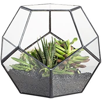 Delicieux NCYP Modern Tabletop Black Glass Geometric Terrarium Container Window Sill  Decor Flower Pot Balcony Planter Diy