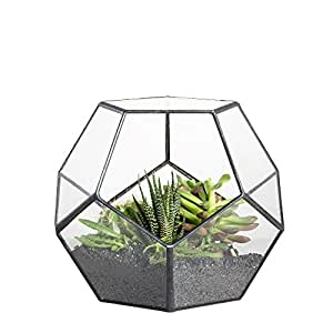 Modern Tabletop Black Glass Pentagon Geometric Terrarium Container Window Sill Decor Flower Pot Balcony Planter Diy Display Box for Succulent Fern Moss Air Plants Mniature Fariy Garden Gift (No Plant)