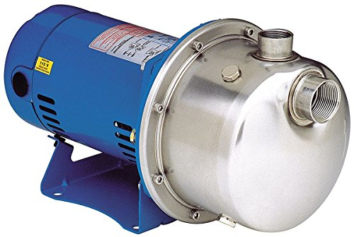 Goulds LB1035 Centrifugal Pump ()