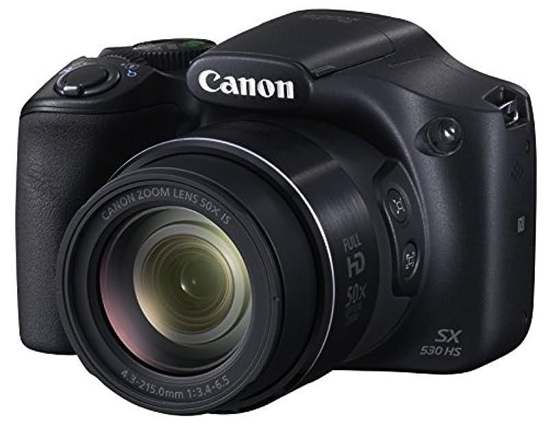 캐논 디지탈 카메라 파워샷 SX530HS PSSX530HS