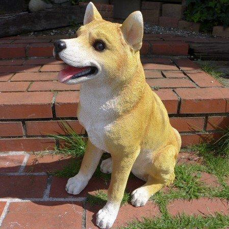 犬の置物 柴犬 3793-00 いぬ イヌ 動物 オーナメント ガーデン インテリア 雑貨 置物 庭 ガーデンマスコット 雑貨小物 ディスプレィ 陶器 B078QZK26Y
