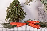Evertrust Realistic Orange Foam Carrots Easter Oranment Rabbits Gift Decoration Easter Party Home Decor (Pack of 8) (Corn Husk)